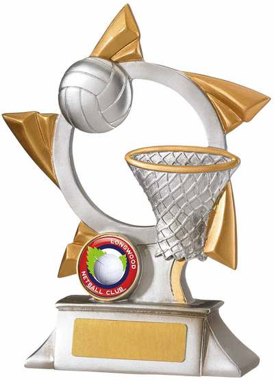 net-ball-medal.jpg