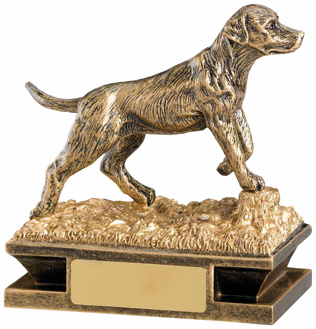dog-award.jpg